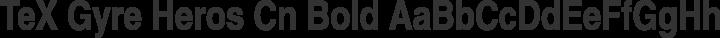 TeX Gyre Heros Cn Bold free font