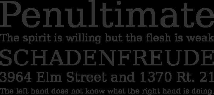 Bitstream Vera Serif Font Phrases