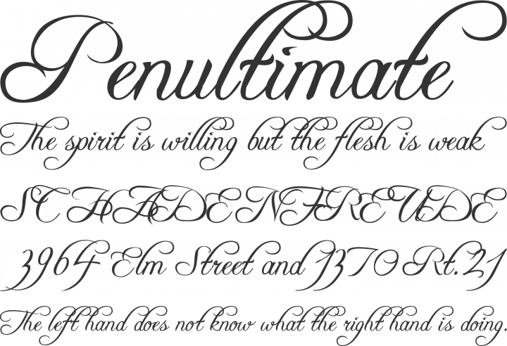 Free font freebooter script by apostrophic labs