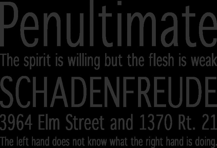 WinterthurCondensed Font Phrases