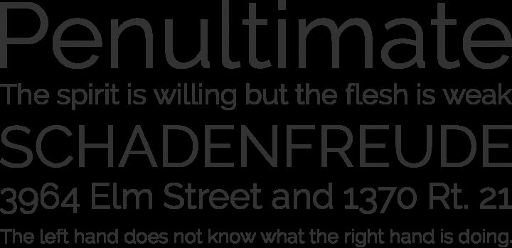 Raleway Font Phrases