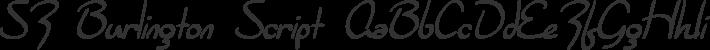 Burlington Script font family by ShyFonts