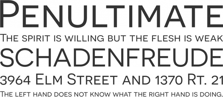 Novecento wide Font Phrases