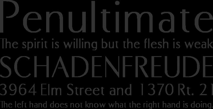 COM4t Fine Regular Font Phrases