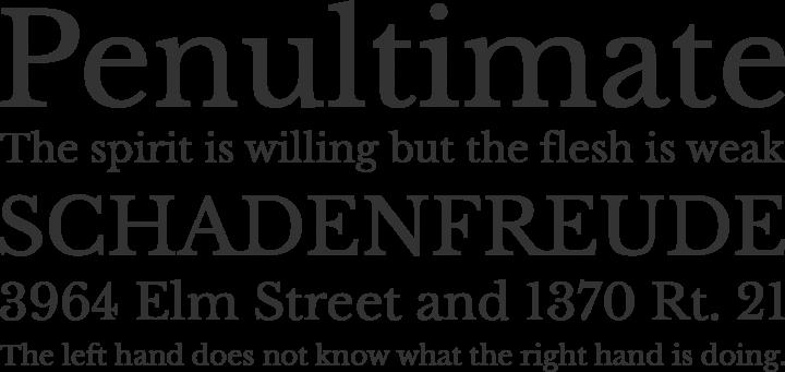 Libre Baskerville Font Phrases