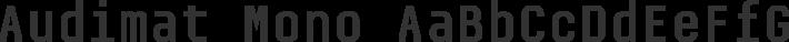 Audimat Mono font family by SMeltery