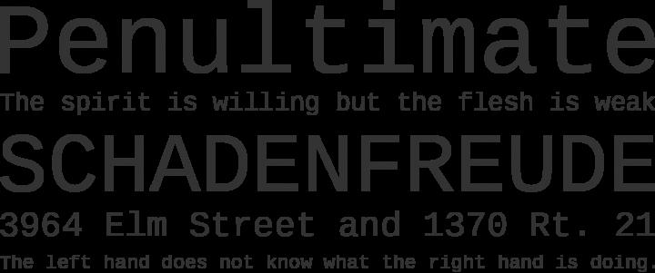 Liberation Mono Font Phrases
