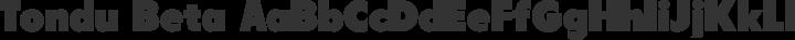 Tondu Beta free font