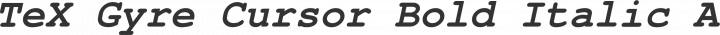TeX Gyre Cursor Bold Italic free font
