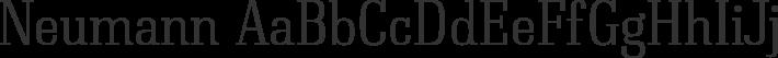 Neumann font family by Typedepot